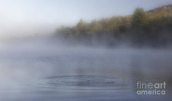 Thomas Schoeller - Ethereal Mist over Rickers Pond - Vermont