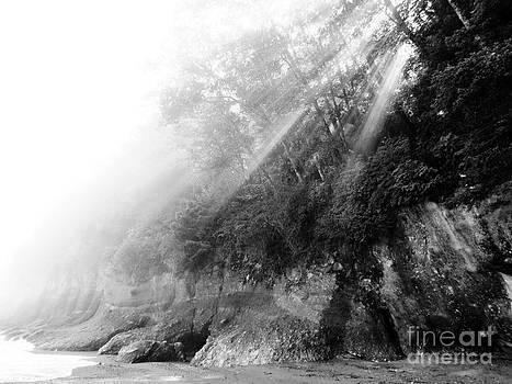 Ethereal Seashore by Gayle Swigart