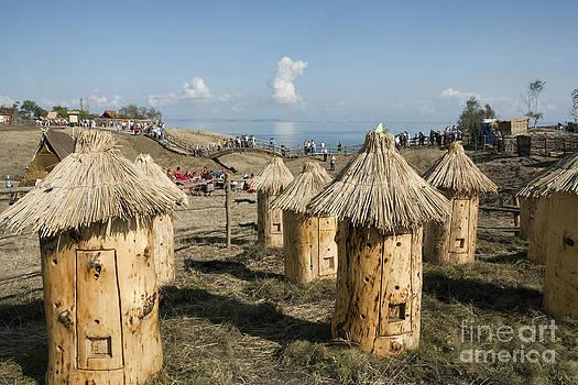 Beehive for bees. Ethnographical museum in Taman. Krasnodar krai. South of Russia by Vladimir Sidoropolev