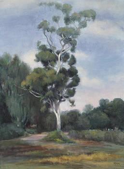 Eucalyptus by Terry Guyer