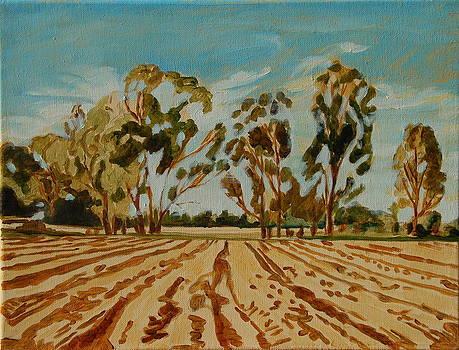 Eucalypus Trees near Bloemfontein by Thomas Bertram POOLE
