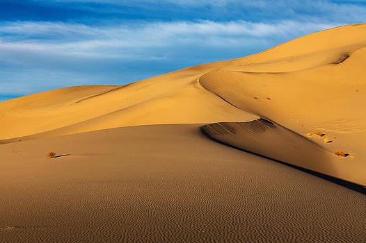 Eureka Dunes by James Marvin Phelps