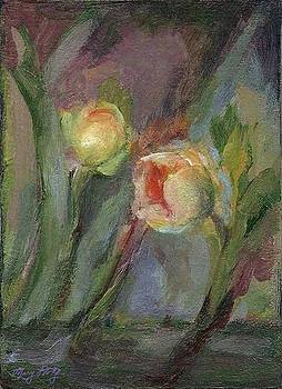 Evening Bloom by Mary Wolf
