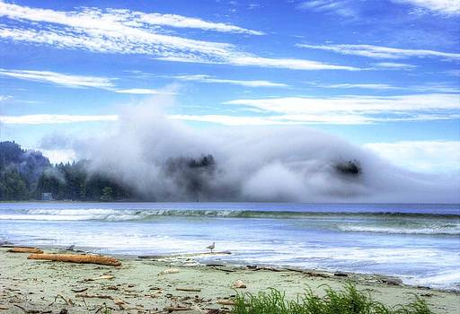 Evening Fog at Crescent Beach. by Rod Mathis