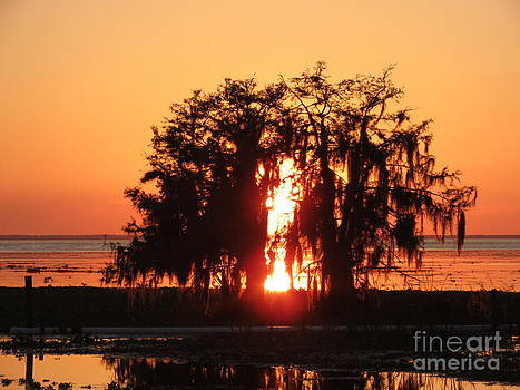 Evening Glow by Fortunate Findings Shirley Dickerson