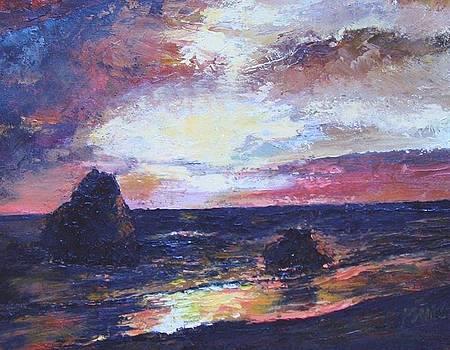 Evening Glow by Patricia Seitz