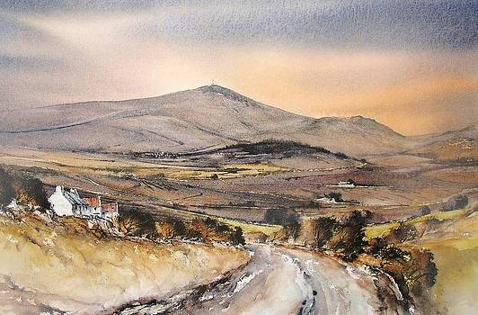 Evening Light Mount Leinster by Roland Byrne