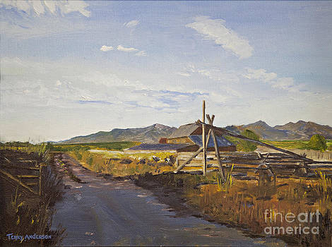 Evening Shadows by Terry Anderson
