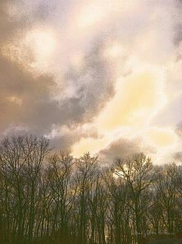 Evening Sky by Nancy Olivia Hoffmann