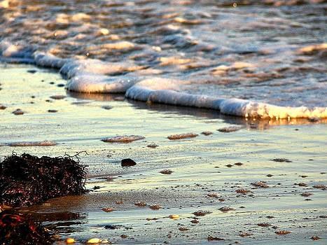 Evening Surf by Allen Beilschmidt