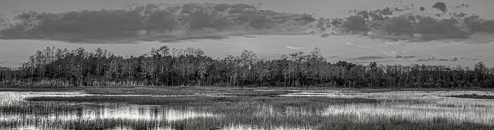 Debra and Dave Vanderlaan - Everglades Panorama BW