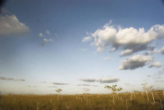 Everglades Plain by Ari Jacobs