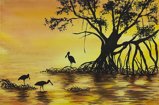 Everglades Sunrise by Barb Capeletti