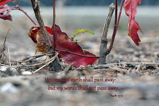Everlasting Words by Larry Bishop