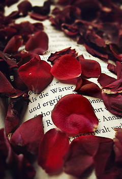 Every rose has it's thorn by Victoria  Kostova