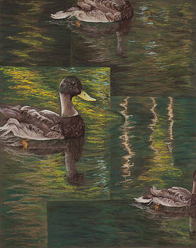 Everything's Ducky by Jocelyn Paine