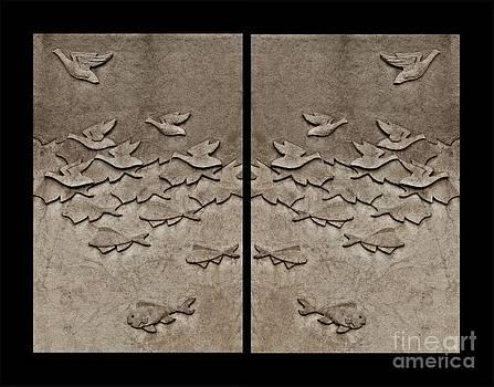 Andrea Kollo - Evolution Collage