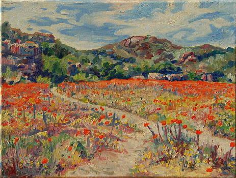 Expanse of Orange Desert Flowers with Hills by Thomas Bertram POOLE