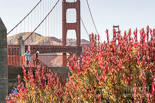 Kate Brown - Exploring the Golden Gate Bridge