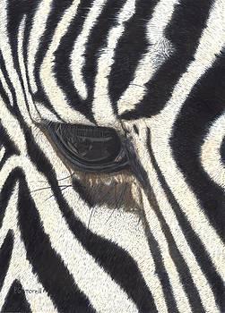 Eye Liner by Pat Gilmore