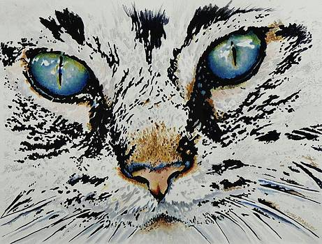 Eyes For You by Joy Bradley