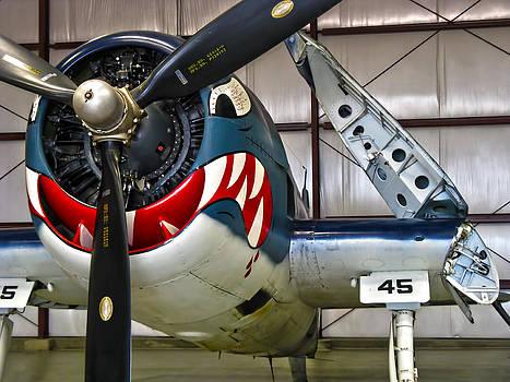Dale Jackson - F6F Hellcat