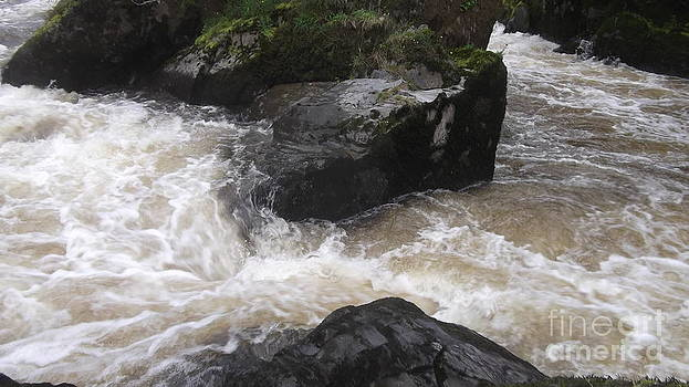 Faces of Cenarth Falls by John Williams