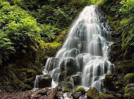 Fairy Falls by Brian Bonham