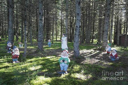 Fairy land by Al Hunter