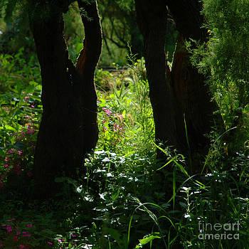 Fairy Tale Woods by Frances Hodgkins