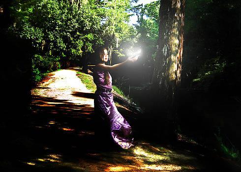 Fairytale by Lisa Nadler