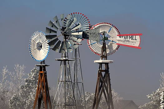 Falcon Windmills In Winter by Clarice  Lakota