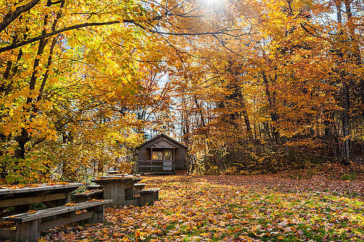 Fall Abounds by Kay Price