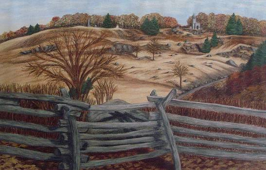 Fall at Little Round Top Gettysburg by Joann Renner