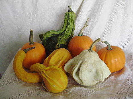 Fall Bounty by Joann Renner