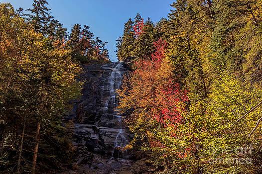 Fall colors at Arethusa Falls by Patrick Lombard