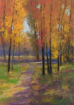 Fall Colors by Paula Ann Ford