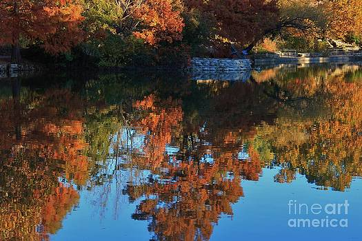 Fall Colors Water Reflection by Robert D  Brozek