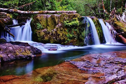 Fall Creek Oregon 3 by Michael Cross