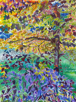 Fall Dogwood by Daniela Johnson