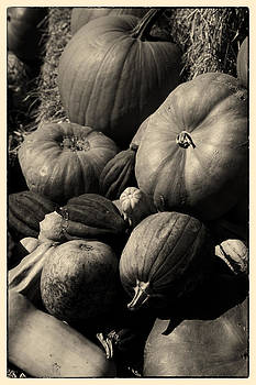 Fall Harvest by Eugene Dailey