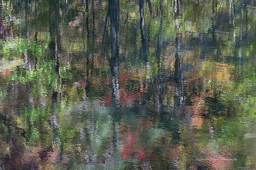 Fall Hues by Sheen Watkins