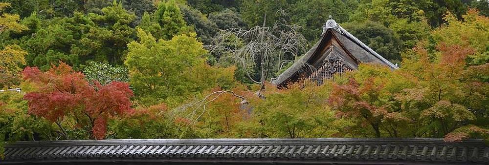 Corinne Rhode - Fall in Kyoto