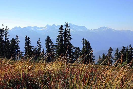 Fall in the Coast Mountains by Gerry Bates