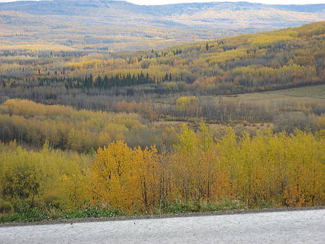 Fall In The Foothills by Gordon Wunsch