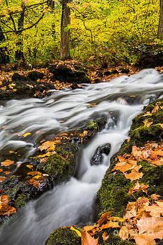 Fall in the Poconos by Kaye Seaboch