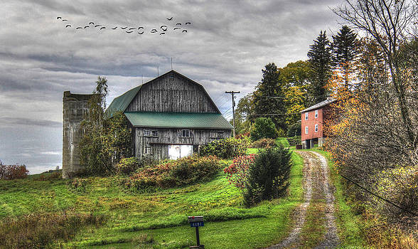 Fall Is Fast Approaching by Sharon Batdorf