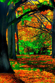 Fall is Here by Bruce Nutting
