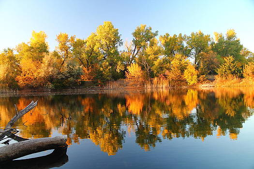 Fall Lake by Alicia Knust