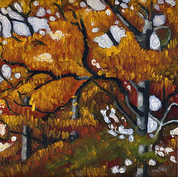 Fall Leaves by Katherine Miller